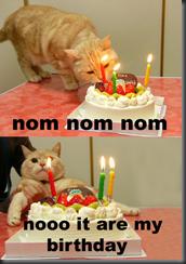 Birthday LOLcat