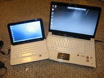 HP dv6 and Mini 110
