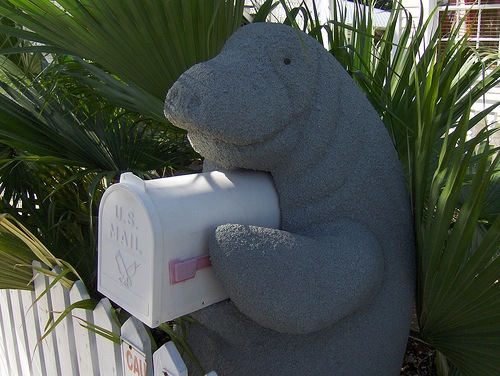 Manatee Mailbox by Joe Shlabotnik on Flickr