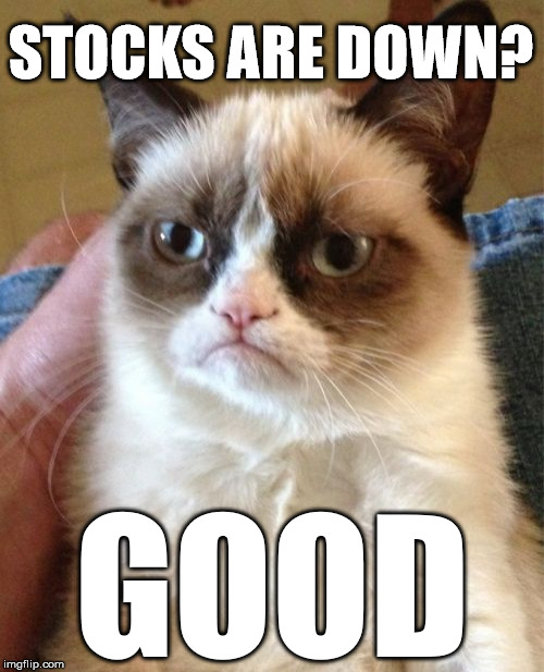 Stocks are down? GOOD! Grumpy cat is buying.